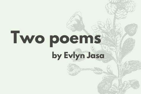 Two Poems by Evlyn Jasa
