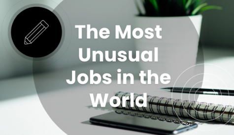 Most Unusual Jobs in the World