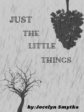 Poem: Just The Little Things